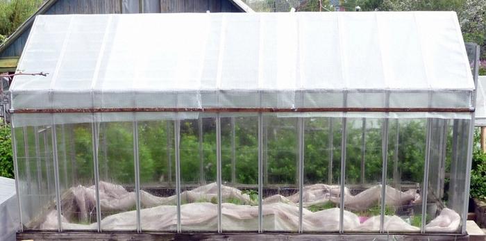 При какой температуре растут огурцы в теплице