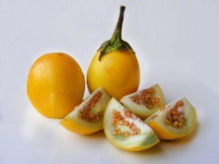 Сорта желтых баклажанов
