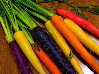 Необычные сорта разноцветной моркови