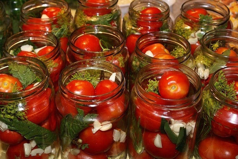 Лучшие сорта засолочных томатов