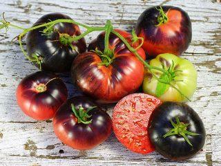 Лучшие сорта помидоров на 2019 год