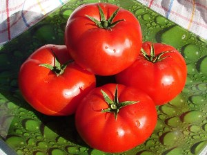 Детерминантные ранние сорта томатов