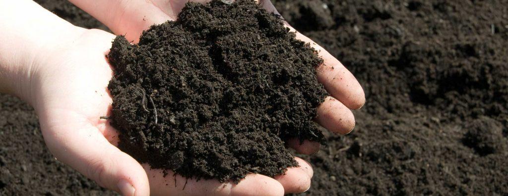 Земля для рассады – как приготовить правильную смесь для молодых растений