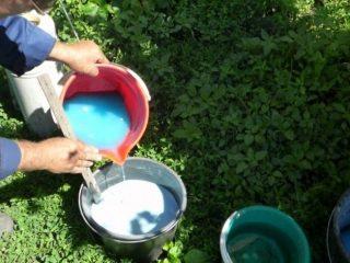 Как приготовить бордосскую смесь для опрыскивания помидоров