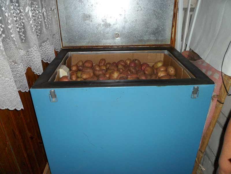 Ящик для хранения картофеля на балконе зимой: особенности изготовления