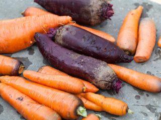 Как хранить свеклу и морковь в погребе