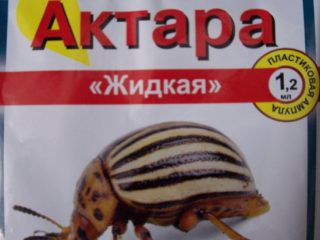 Актара от колорадского жука: отзывы