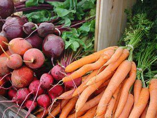 Хранение моркови и свеклы зимой
