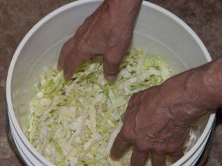 Как солить капусту на зиму в ведре