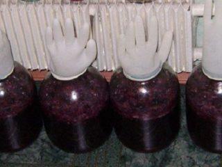 Приготовление вина из винограда в домашних условиях: рецепт