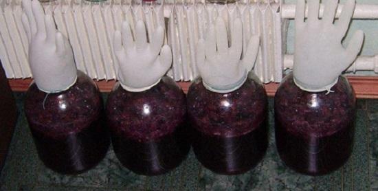 Виноградное вино в домашних условиях своими руками 74