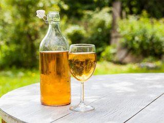 Домашнее вино из сока яблок: рецепт