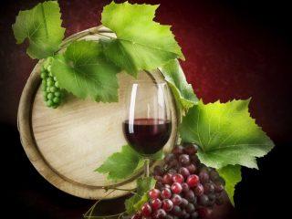 Вино из Изабеллы в домашних условиях: простой рецепт