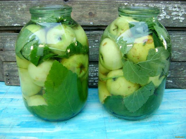 Как заквасить яблоки на зиму в бочке