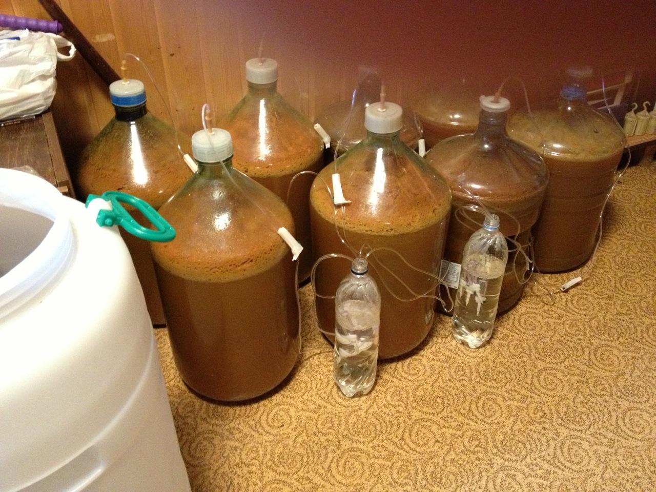 Как сделать вино из забродившего яблочного варенья в домашних условиях