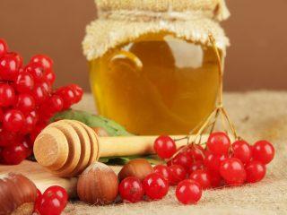 Калина с медом: рецепт