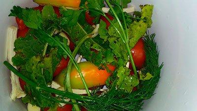 Зеленые помидоры в ведре кусочками