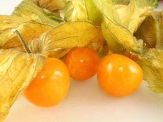 Физалис ягодный