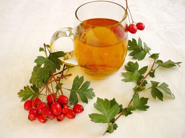 Плоды боярышника полезные свойства и противопоказания — Полезные свойства