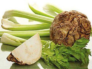 Сельдерей корневой: рецепты приготовления, чем полезен