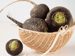 Редька черная: полезные свойства и противопоказания