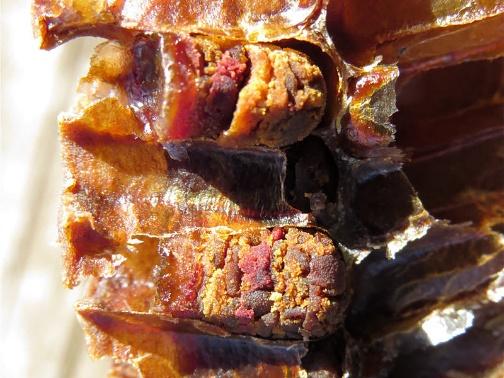 Перга при циррозе печени