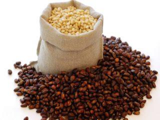 Как хранить кедровые орехи очищенные и в шишках