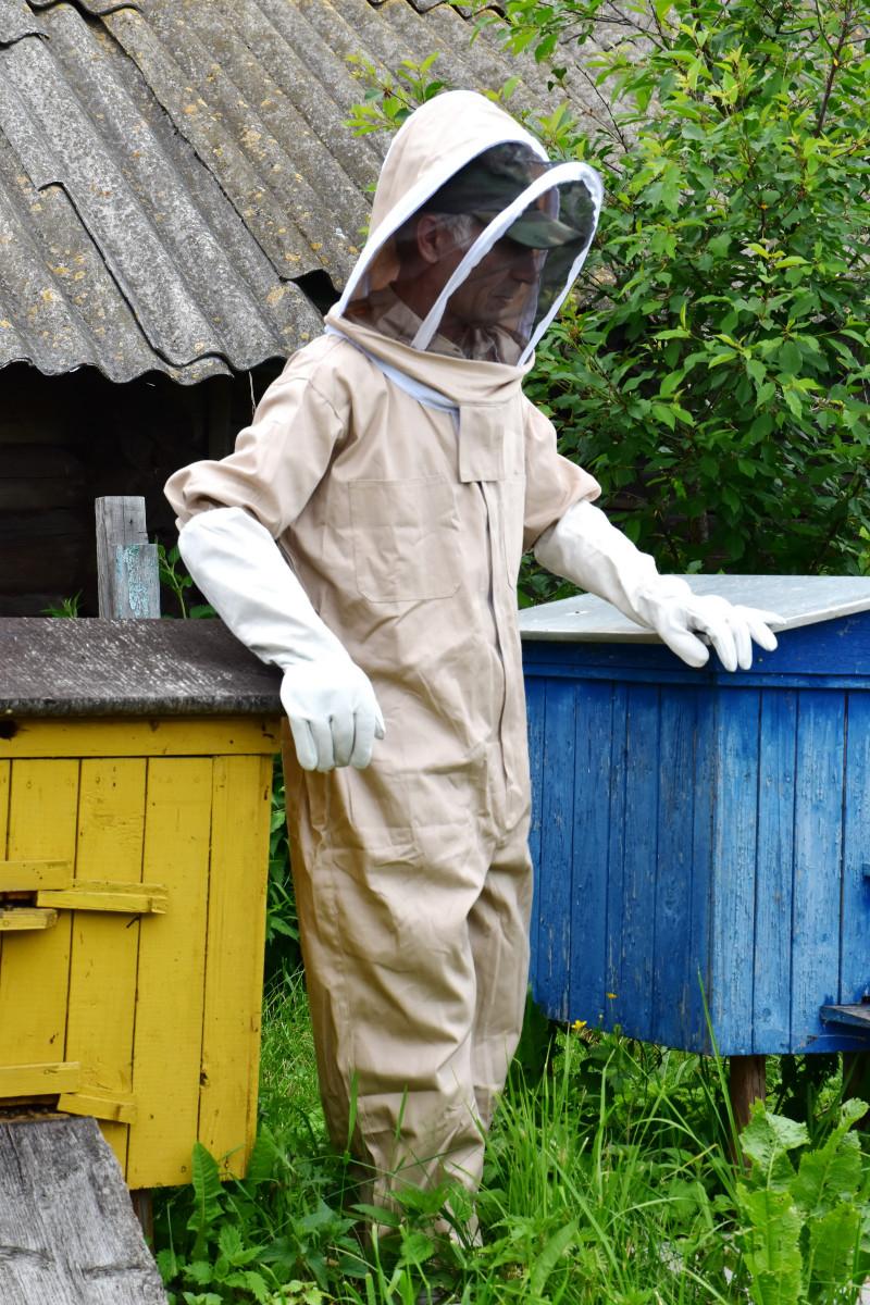 Сделать маску пчелы своими руками фото 840