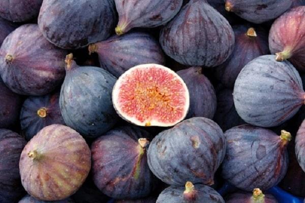 Варенье из инжира на зиму польза и вред, рецепты с фото, отзывы