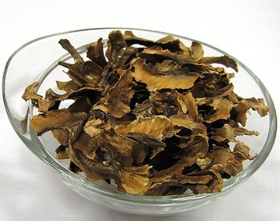 Перегородки грецкого ореха — лечебные свойства и противопоказания, рецепт приготовления