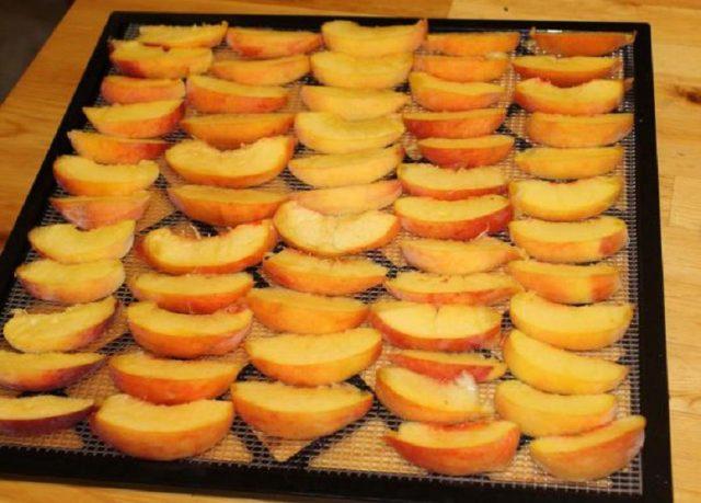 Вяленые персики польза и вред, как вялить в домашних условиях, в электросушилке