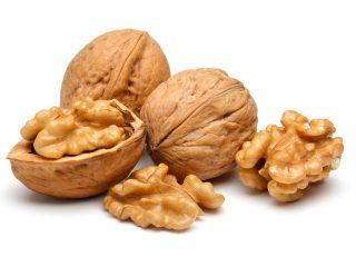 Лучшие и морозоустойчивые сорта грецкого ореха