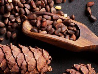 Кедровые орехи: польза и вред для организма