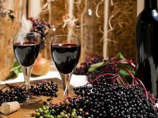 Простые рецепты вина из бузины черной и красной