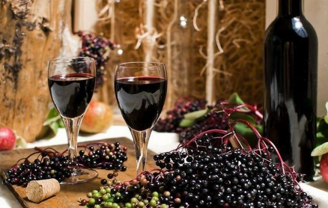 Вино из бузины рецепты из красной, из черной бузины, из цветов