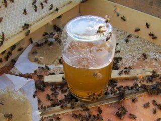 Сироп для пчел на зиму: пропорции и правила приготовления