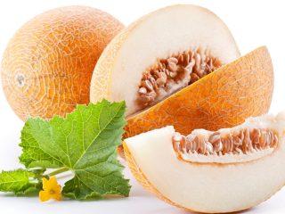 Дыня – это ягода или фрукт