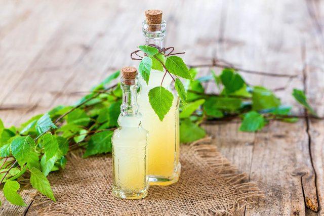 Березовый сок польза и вред для женщин, для беременных, для мужчин, детям, состав, калорийность,