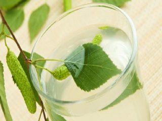 Брага на березовом соке: рецепты, пропорции для самогона