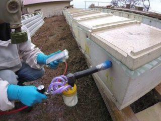 Препараты на основе амитраза для пчел: инструкция по применению