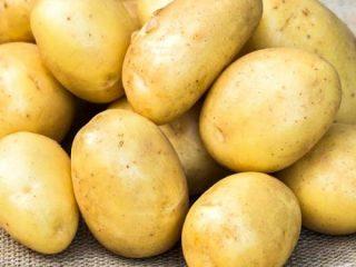 Картофель Банба: описание сорта, отзывы