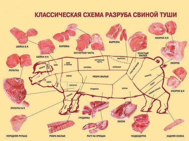 Выход мяса поросенка