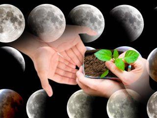 Лунный календарь садовода на апрель на 2019 год