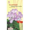 Цветы Пеларгония Горизонт Бело-голубая зональная/Сем Алт/цп 4 шт. НОВИНКА