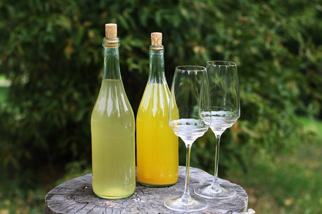 Вино из одуванчиков рецепты приготовления в домашних условиях