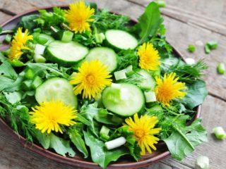 Салат из одуванчиков: польза и вред