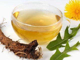 Чай из одуванчиков: рецепты приготовления из цветов, корней и листьев
