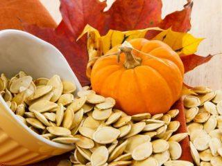 Чем полезны тыквенные семечки для организма: состав, калорийность, содержание БЖУ, цинка