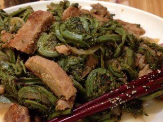 Как готовить соленый папоротник: рецепты вкусных блюд с мясом и без