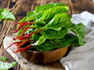 Как вырастить шпинат в открытом грунте и теплице